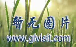 桂林塔山日落摄影